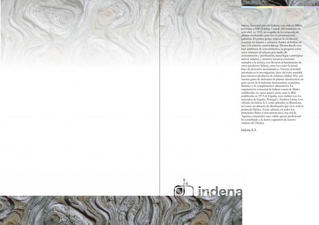 Maquetación de catálogo - maquetación de doble página interior - Introducción