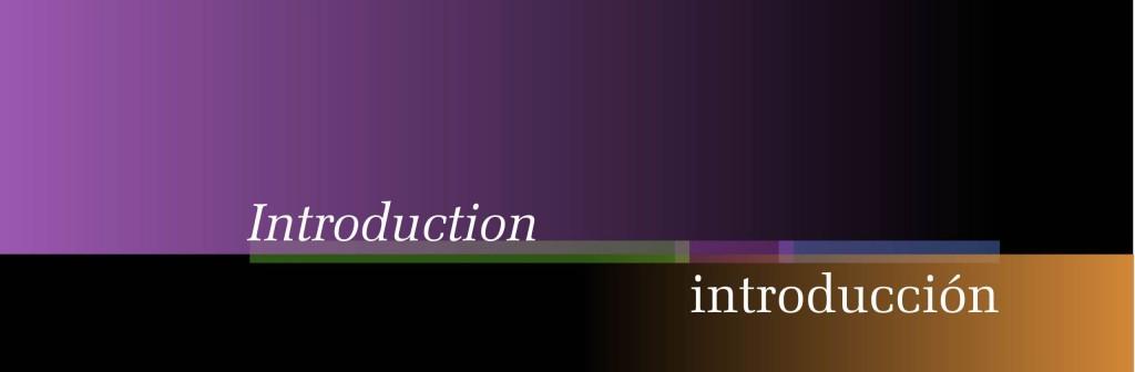 Maquetación de libro - cubierta de capítulo - Introducción